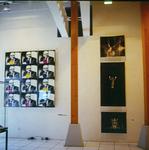 Welches Schweinderl.., Aufsteiger, Plexi-Glas-Arbeit, Foto-Arbeit, städt. Galerie Möglingen